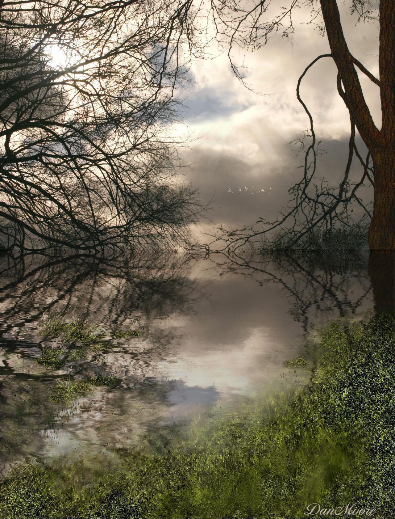 Marsh by danmoore