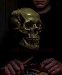 Skull by Saifers