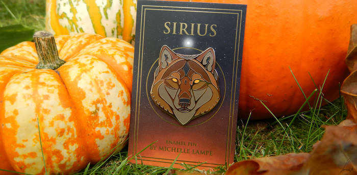 Pumpkinnnnsss and one of my wolf pins