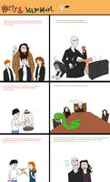 HP: Harry and Voldemort