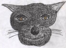 Golden Eye The Cat