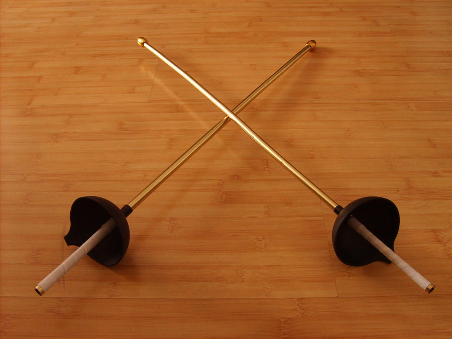 Real Fencing Sword Toy Fencing Swords by Chioky