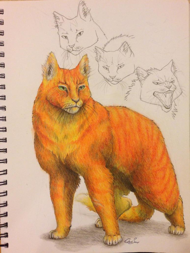 Warrior Cats -- Firestar by SoooThisIsArt----Wow on DeviantArt Warrior Cat Drawings Firestar