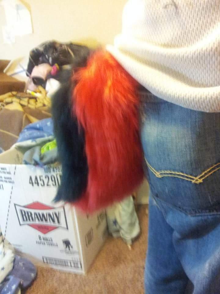 New tail by SparkySpartaTheWolf