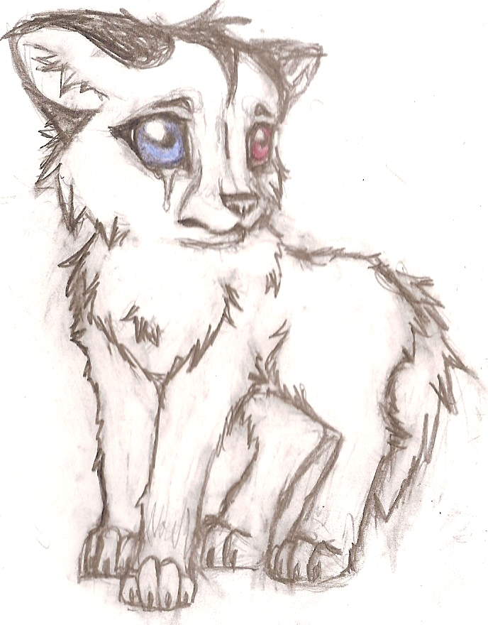 the gallery for gt wolf crying drawing