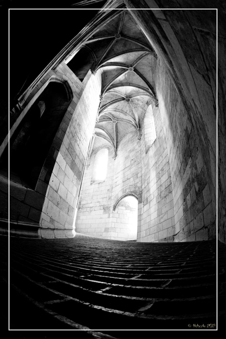 Into the tower by 0-Photocyte