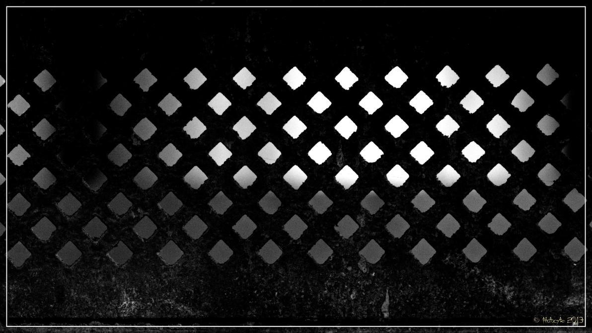 Grid by 0-Photocyte
