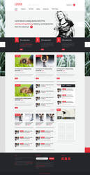 Premium Wordpress theme LOVEit