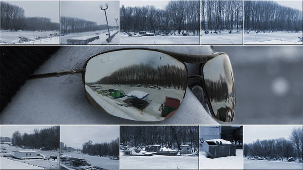 Reflections of the frozen world