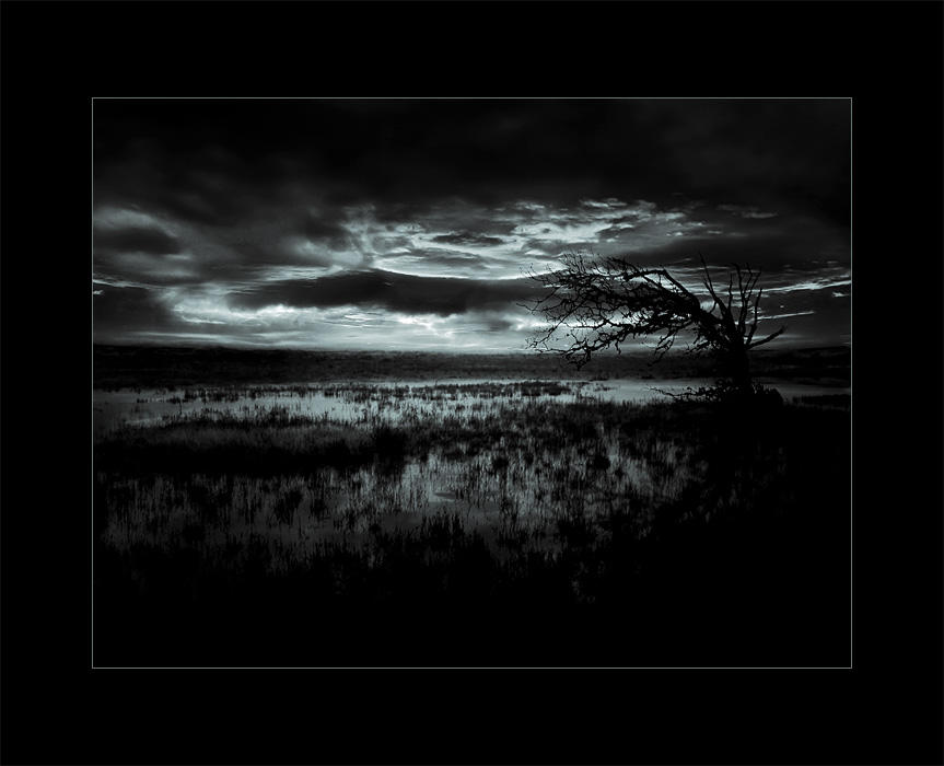 Night by raun