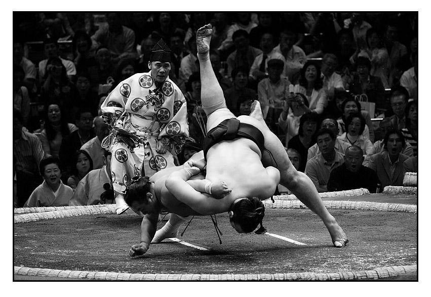 sumo amalgamate by raun