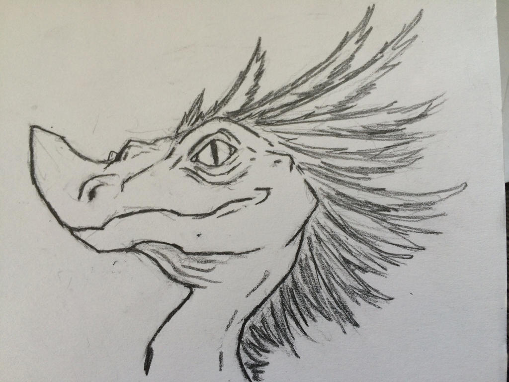 Sky Dragon by ThunderWolf3