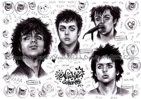 Billie Joe ~ Nyan Portraits