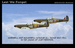 Lil' Remembrance Day 2010 by DrOfDemonology