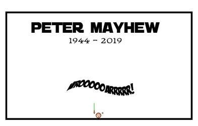 Goodbye Chewie