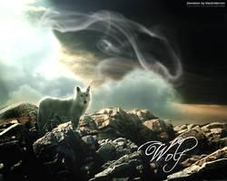 The Wolf by blackriderrom