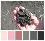 Colours #17