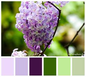 Colours #21