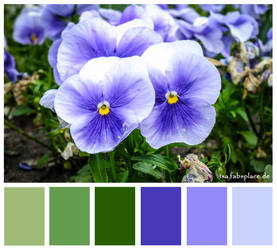 Colours #22