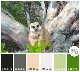 Color Palette #23 - Follow Me by IsaaaHa