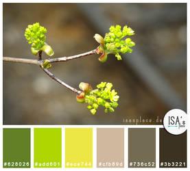 Color Palette #24 - Fresh Beginnings by IsaaaHa
