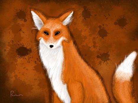 SunBurn Fox