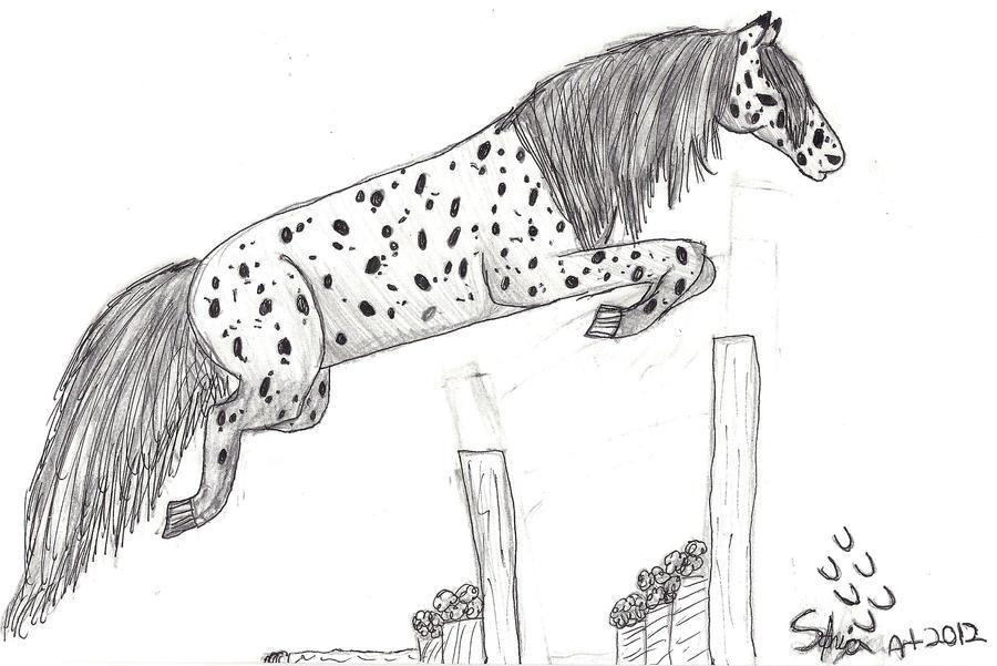 Amazoncom Jim Daly  Pencil Drawings  Drawings