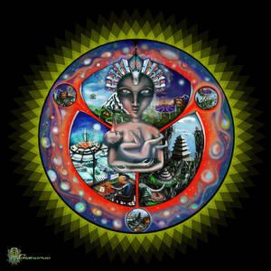 Multiverse awakening