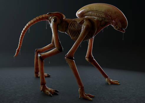 Xenobabe - Arnold render 1