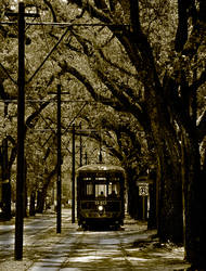 St. Charles Street Car Line by maxlake2