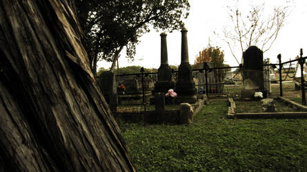 More Adventures amongst the Graves