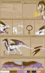 Tir Goldeness ~Character Sheet 2016~