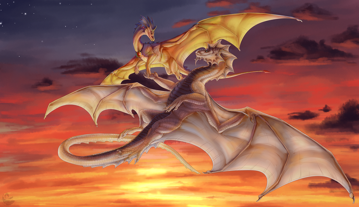 Sunset Flight by Tir-Goldeness
