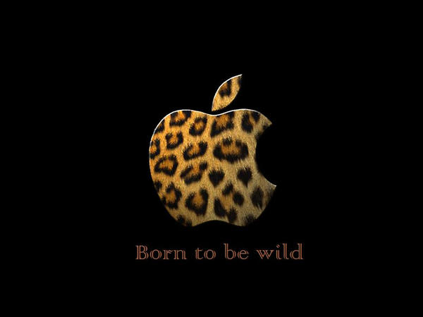 Born to be wild by Loverlet