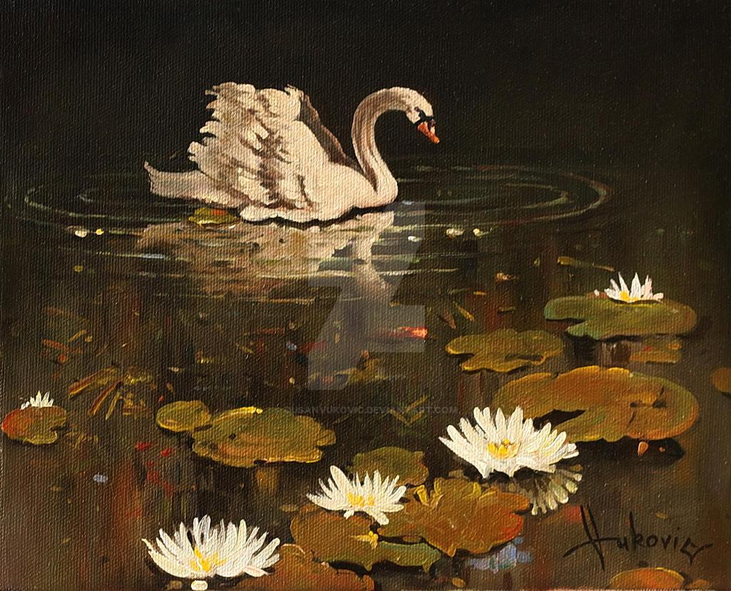 lonely swan by dusanvukovic