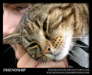 Friendship by IcecoldAngel