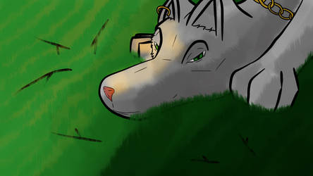 [Test] Wolf in A Field by thewolfstudieos