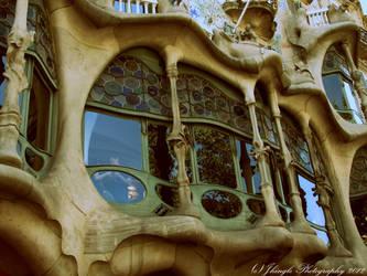 Casa Batlo by Jhingle