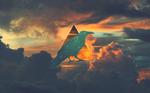 Crow of Skies