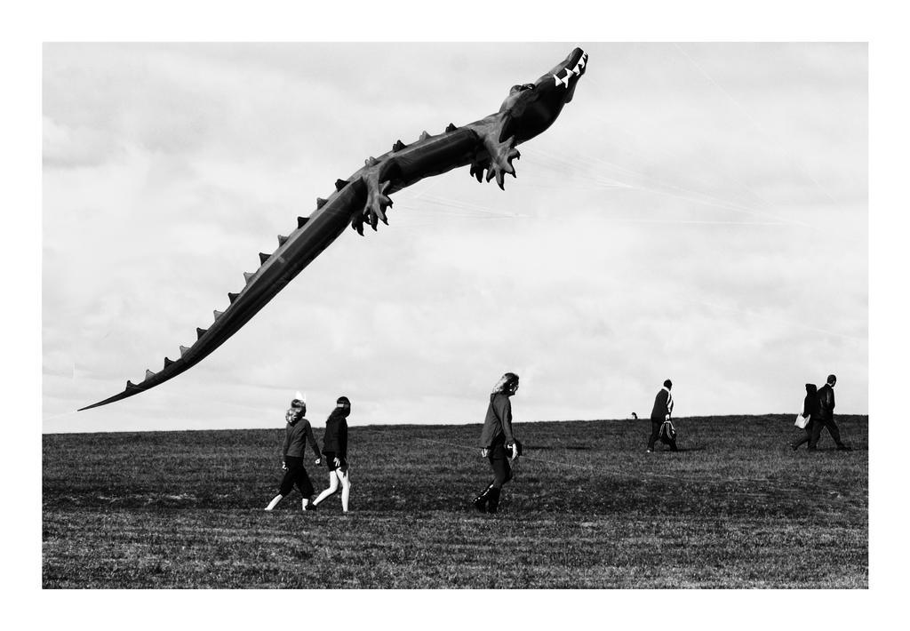 Aligopter by DougNZ