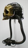 servo skull, side by richardsymonsart
