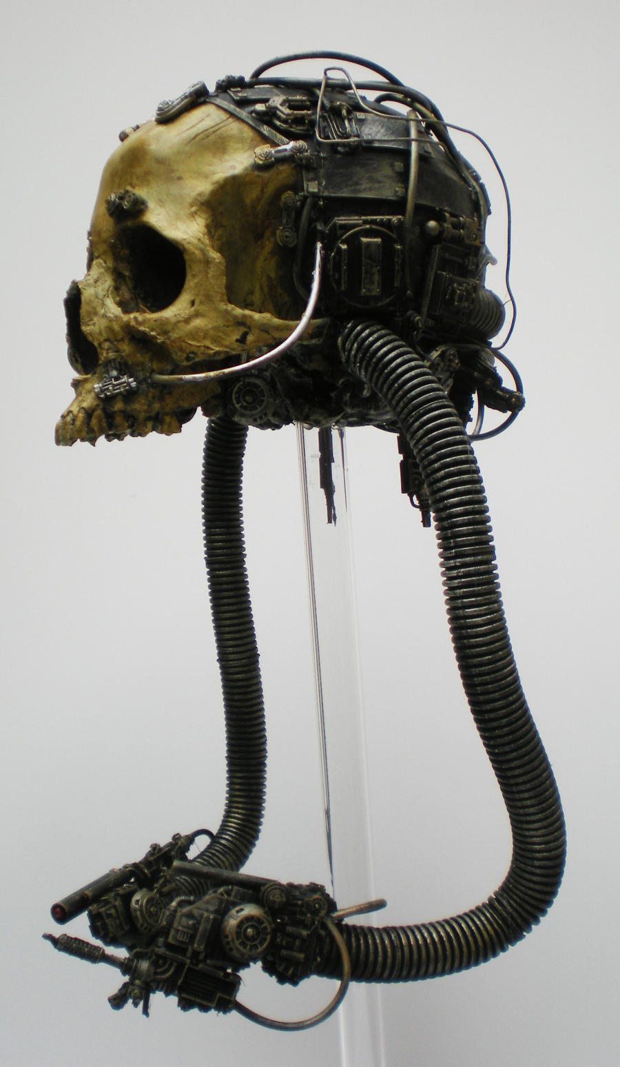 servo skull, side by richardsymonsart