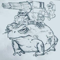Cyber battle toad