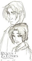 Emo Remus and Tonks -HBP