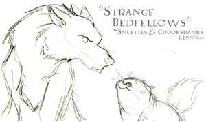 Strange Bedfellows - HP