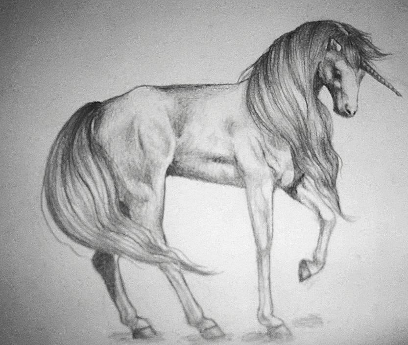 unicorn by im-not-a-spy