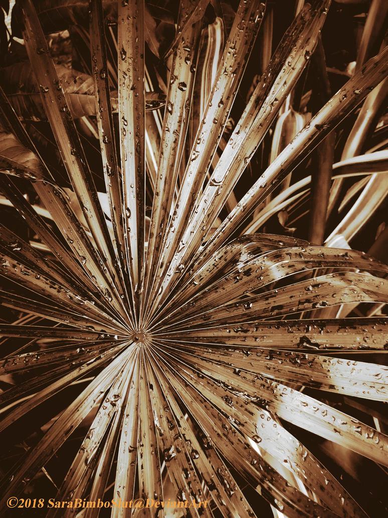 Sweaty Palms by SaraBimboSlut