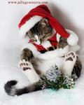 Santa's Little Sleeper 2