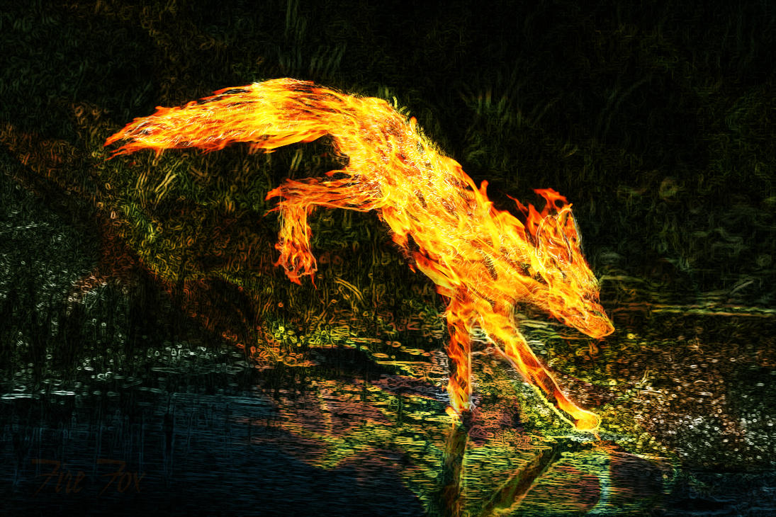 Fire Fox by Qbus92