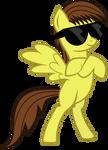 Bryce's Pony